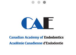 Canadian academy of endodontics logo